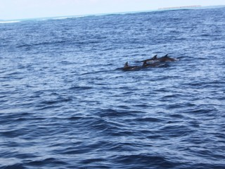 Hint okyanusu açıklarında...